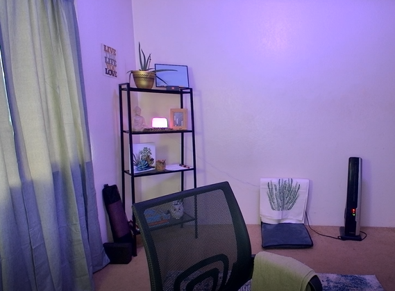 A room with a purple hue a desk chair, shelf with plants and other items